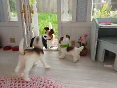 Come on in!!!....  #2 (TutuBella) Tags: daisydayes dog bjd puppy pet eddie sparky snoopy iplehouse ilovedogs welcome cute