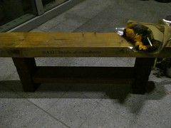 RIP (stillunusual) Tags: manchester mcr city england uk manchesterarenabombing terrorism tribute remembrance rip memorial bench flowers angelsofmanchester 2018