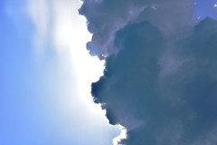 Lion Sky (Robin Shepperson) Tags: thunder storm lion pareidolia d3400 nikon weather clouds beast berlin germany blue dark white summer light nature cloud