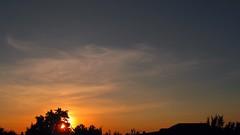 IMG_0502 (ALEKSANDR RYBAK) Tags: закат солнце садится горизонт деревья небо облака вечер яркие цвета солнечный свет лучи пейзаж