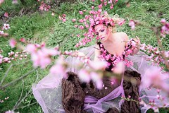 """TEATRONATURA """"Pink blossom explosion"""" (valeriafoglia) Tags: art atmosphere amazing stylist soft spring springtime beautiful beauty bloom blossom pink photo photography pretty fantasy fairy flowers creative composition capture colors creature model makeup magic m"""