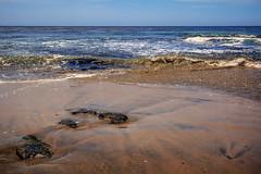 Natural Bridges State Beach (Abel AP) Tags: beach sand water waves ocean pacificocean shore nature landscape naturalbridgesstatebeach santacruz california usa northerncalifornia coast westcoast californiacoast californiabeaches abelalcantarphotography