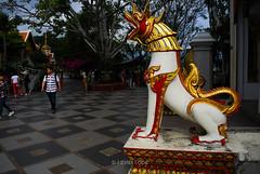 Wat Phra That Doi Suthep (BLUEPEAK19) Tags: chiangmai temples travelphotography indochina thailand wat ancient buddhism buddha southeastasia watdoisuthep stupa travel building architecture monastery monk monarch