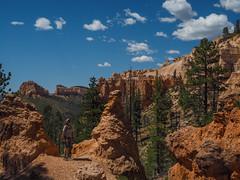 Swamp Canyon, Bryce Canyon National Park, Utah (netbros) Tags: brycecanyonnationalpark utah brycecanyonwilderness swampcanyon swampcanyontrail netbros internetbrothers