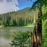 Synevyr Lake. HDR thumbnail