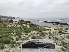 20180618_184800914_iOS (jimward85) Tags: pointlobos carmelbythesea montereybay california