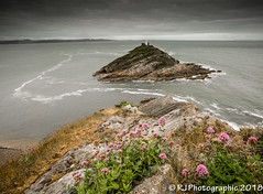 Photo of Gower-7