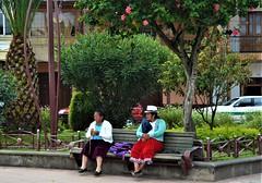 Descansando en el parque. (Marcelo Jaramillo Cisneros) Tags: gente escenacallejera
