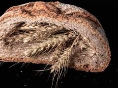 exposició GFH (nuri_bri) Tags: tamron pa pan bread cereals blat trigo ingredientes ingredients cereales wheat concetp thecereals inthebread canon gfh
