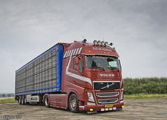 Tijs de Koning (NL) (Brayoo) Tags: livestock volvo customized transport friendlydriver