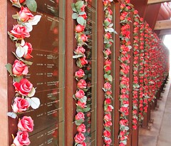 A Rose for every Miner who died in Broken Hill Mines, New South Wales, Australia (Red Nomad OZ) Tags: brokenhill newsouthwales nsw australia outback desert