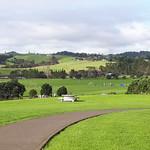 Leigh Auton Reserve, Pohutukawa Coast, New Zealand thumbnail