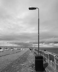 seagull lookout post (louys:) Tags: clouds harbour musselburgh fuji xt2 xf14mmf28r primelens wideangle mono monochrome blackandwhite sea scotland edinburgh bird seagull