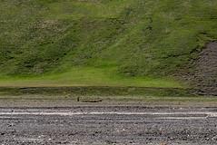 Environs de Xinaliq, Quba-Khachmaz, Azerbaïdjan (Pascale Jaquet & Olivier Noaillon) Tags: berger moutons paysage rivière troupeau environsdexinaliq qubakhachmaz azerbaïdjan aze