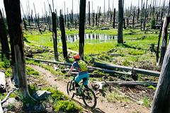 Waldo Lake Burn (Jason Hummel Photography) Tags: sallyschwartz waldolake mountainbiking waldolakemountainbiking oregon burn forestfire jhh5380