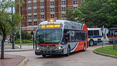 WMATA Metrobus 2014 NABI 42 BRT Hybrid #8030 (MW Transit Photos) Tags: wmata nabi 42 brt hybrid