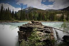 Athabasca Falls (sbstnl.) Tags: athabasca falls icefields parkway canada alberta water wasserfall nature jasper national park