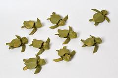 Green Sea Turtle Hatchlings (Ponadr) Tags: origami paper geometric fold folding wood sculpture 3d sea creature ocean life nature natural turtle green hatchlings
