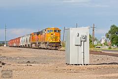 Beer Run Pulling West (ColoradoRailfan) Tags: bnsf bnsfrailway goldensub bnsfgoldensub sd70mac bnsf8900