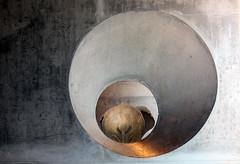 Hole (Alan McRae) Tags: texture photoshop surreal humor architecture elephant hole