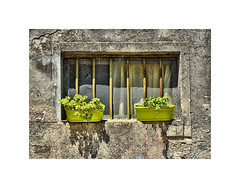 A splash of Green (CJS*64) Tags: craigsunter craig croatia cjs64 travel traveling urban colour colours two green wall baskets flowers bars window nikon nikond7000 dslr splt