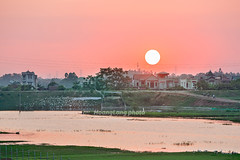 _Y2U2640.0718.Vĩnh Phúc (hoanglongphoto) Tags: asia asian vietnam northvietnam landscape scenery vietnamlandscape vietnamscenery vietnamscene countruyside countruysideinvietnam northernvietnam river water watersurface sunset sky redsky sun hdr canon canoneos1dx canonef70200mmf28lisiiusm bắcbộ làngquê nôngthôn phongcảnh phongcảnhlàngquêviệtnam hoànghôn bầutrời mặttrời bầutrờimàuđỏ nhà dòngsông mặtnước bãicỏ