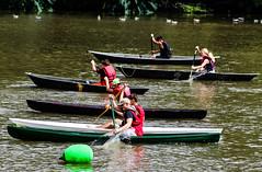 Pirogue Race (_Lionel_08) Tags: boats louisiana race water swamp cajun