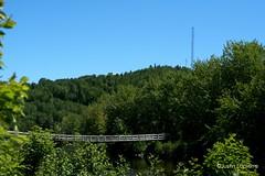 Club de golf de St-Michel-des-Saints (justinlapierre1998) Tags: nature paysage vert arbres arbre pont mont montagne québec canada