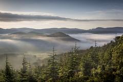 Brumes dans les Corbières (guilhemmanzano) Tags: corbières cèdre leverdesoleil nuages paysage printemps tuchan brouillard brumes mistymountains sunrise