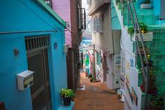 Gamcheon Culture Village, Busan (buddhistfunk) Tags: south korea korean koreans asia asian asians colorful color colourful colour rok urban street busan houses architecture art artwork painting paintings mural murals graffiti photography streets fog foggy