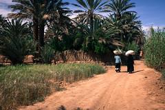 1804300512_Maroc_485 (Nuthead Dispatches) Tags: trip journey bike bicycle maroc atlas bikepacking africa desert marocco adventure