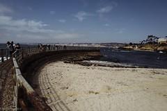 Sea wall, La Jolla Cove. (danielnotnow1) Tags: seawall lajollacove leicaq