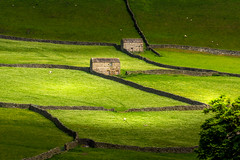 The Green Green Grass of Home (deanallanphotography) Tags: adventure anawesomeshot artisticexpression beauty colors flickrsbest field flowers greatbritishlandscape ngc impressedbeauty uk landscape light natgeo nature outdoor outdoors photography peaceandquiet peaceful panorama quiet rural travel texture view valley