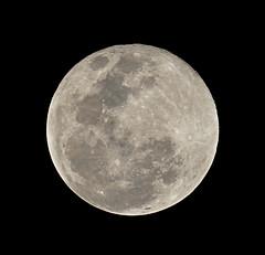 Full moon... again. Sorry, I couldn't resist. (explored) (jeanmarie.gradot) Tags: lune moon luna mond ciel sky nuit noche nacht cielo himmel fullmoon pleinelune lunallena handheld explored explore