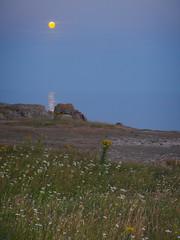 Pleine lune et son reflet marin (yanific) Tags: lune pleinelune reflet lecroisic bretagne