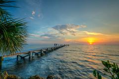 Tampa Bay Sunset (ap0013) Tags: tampabay sunset littleharbor pier ruskinflorida ruskin florida sun water palm