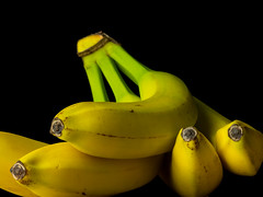 Bananas (Andy Sut) Tags: bananas fruit food studio stilllife yellow blackbackground fruitseries andysutton edible eating dining lumix bridgecamera amateur homestudio studiolighting still