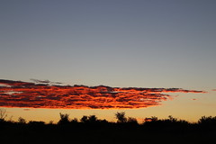 Clouds on Fire (Rckr88) Tags: clouds fire cloudsonfire wolwespruitnaturereserve northwestprovince southafrica wolwespruit nature reserve north west province south africa cloud cloudy cloudysky sun sunset sunsets sunlight sky skies naturalworld outdoors travel travelling red