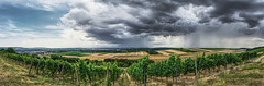 Stormfront over the Nahe River valley (Parchman Kid (Jerry)) Tags: stormfront over nahe river valley parchmankid sony a6500 rain horizon color wheat fields panorama pano landscape vineyards wine rheinlandpfalz