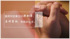 主题经文- 信靠 (追逐晨星) Tags: 祷告 圣经金句 金句卡片 金句图片