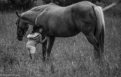 A Girl and Her Pony (danfryer2) Tags: summer barn monochrome pony trigger mono lizzy nikond7200 blackandwhite digitalphotography 4yearsold