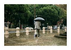 Estrela, Lisboa (Sr. Cordeiro) Tags: estrela lisboa lisbon portugal rua street chuva rain rainy chuvoso chapéudechuva umbrella reflexo reflex homem man fuji fujifilm xpro2 fujinon xf 35mm f2 wr
