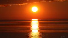 SUNSET OVER  ST. LAWRENCE RIVER  |   REFORD GARDENS   | LES JARDINS DE METIS  |  COUCHER DE SOLEIL  |   GASPESIE  |  QUEBEC   |  CANADA (J P Gosselin) Tags: sunset over st lawrence river | reford gardens gaspesie quebec canada canon 7d 7dmarkii rebel t2i canonrebelt2i eos canon7d markii rebelt2i canonrebel canont2i eost2i eos7d eos7dmarkii mark 2 mark2 eos7dmark2 canon7dmarkii ii canoneosrebelt2i canoneos7d canoneos ph:camera=canon coucher soleil les jardins de metis