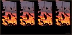 Sonnenuntergang am Fenster mit Herz (+2 Fotos) (eSHa-photos2016 (no Group or Award Icons pl) Tags: sigrid eshaphoto sonnenuntergang fenster himmel orchideen herz kristalle glaskristalle collage