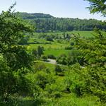 Wuerttemberg - Essingen - lush green of the landscape -  !wonderful! thumbnail