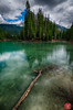Things in the water (Kasia Sokulska (KasiaBasic)) Tags: bc emerald lake rockies mountains spring landscape nature beauty yoho np canada fujix water forest