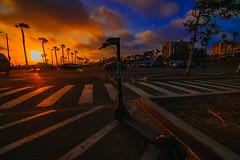 14 (morgan@morgangenser.com) Tags: sunset red orangeyellow blue pretty cloud silhouette sun evening dusk palmtrees bikepath sand beach santamonica pacificpalisades beautiful black dark cement amazing gorgeous inawe ca