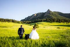 Katie+Aidan-151 (simplyeloped) Tags: chautauquapark co colorado mountains field dogs car