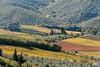 Toskana (lucky5.1) Tags: tuscany autum fall colors sunshine d700 nikon chianti 70200mm nebenstrecke