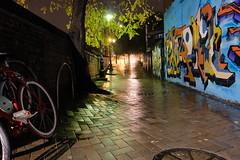 Walkway (Shawn Sijnstra) Tags: alley allwyway path walkway rain night urban wet graffiti sydney lights